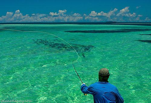 Key west fly fishing guide captain lenny for Bone fishing key west